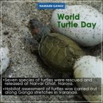 May 23 – World Turtle Day