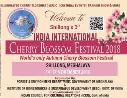 India International Cherry Blossom Festival