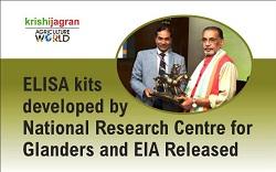recombinant ELISA kits